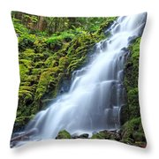 White Branch Falls Throw Pillow