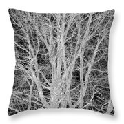 White Branches Throw Pillow