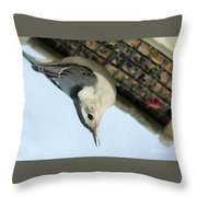 White Breasted Nuthatch At The Suet Feeder Throw Pillow