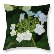 White Bridal Wreath Flowers Throw Pillow