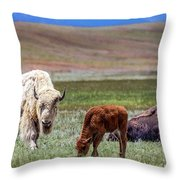 White Buffalo Throw Pillow
