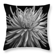 White Burst Throw Pillow