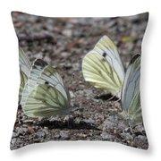 White Butterflies Throw Pillow