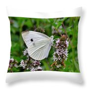 White Butterfly At The Good Earth Market Throw Pillow