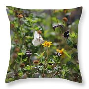 White Butterfly On Golden Daisy Throw Pillow