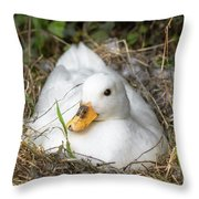 White Call Duck Sitting On Eggs In Her Nest Throw Pillow