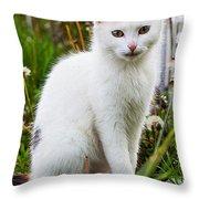 White Cat Sitting Throw Pillow