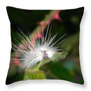 White Caterpillar  Throw Pillow