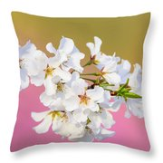 White Cherry Blossoms Against A Pink And Gold Background Throw Pillow