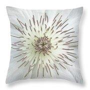 White Clematis Flower Garden 50121b Throw Pillow