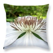 White Clematis Flower Garden 50146 Throw Pillow
