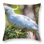 White Cockatoo Throw Pillow