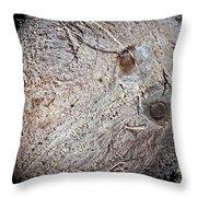 White Coconut Throw Pillow