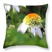 White Coneflower Throw Pillow