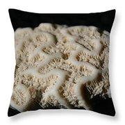 White Coral Throw Pillow