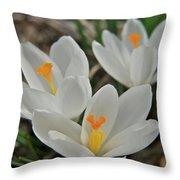 White Croci Throw Pillow