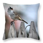 White-crowned Sparrow 2 Throw Pillow