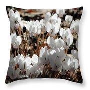 White Cyclamen Throw Pillow