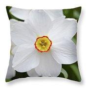 White Daffodil Throw Pillow