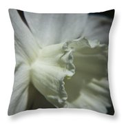White Daffodil Throw Pillow