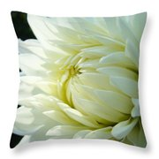 White Dahlia Flower Art Print Canvas Floral Dahlias Baslee Troutman Throw Pillow