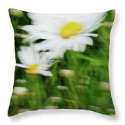 White Daisy Digital Oil Painting Throw Pillow