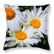 White Daisy Flowers Throw Pillow