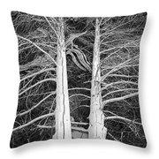 White Dead Trees Throw Pillow
