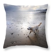 White Dog Throw Pillow