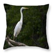 White Egret-signed-#0493 Throw Pillow