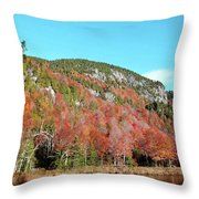 White Face Mt.  Throw Pillow