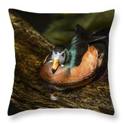 White-faced Whistling Duck  Throw Pillow