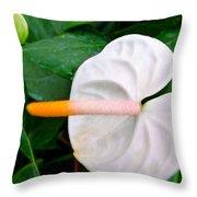 White Flamingo Flower Throw Pillow