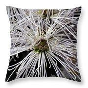 White Flora Throw Pillow