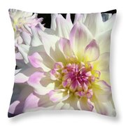 White Floral Art Bright Dahlia Flowers Baslee Troutman Throw Pillow
