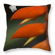 White Flower And Orange Throw Pillow