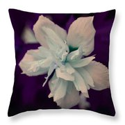 White Flower W/purple Background Throw Pillow