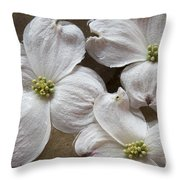 Dogwood White Flowers On Stones Throw Pillow
