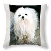 White Fluff Throw Pillow