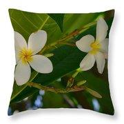 White Frangipani Flowers Throw Pillow