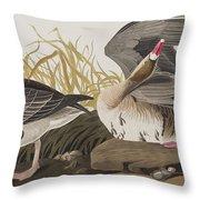 White-fronted Goose Throw Pillow