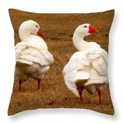 White Geese 1 Throw Pillow