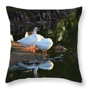 White Geese In A Park With Water Reflection Throw Pillow