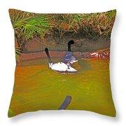 White, Geese, On, Pond Throw Pillow