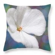 Winter White Geranium  Throw Pillow