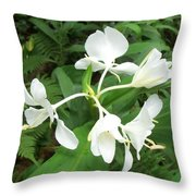 White Ginger Throw Pillow