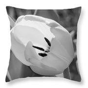 White Goddess Tulip Photography  Throw Pillow