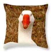 White Goose Close Up 1 Throw Pillow