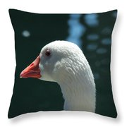 White Goose Sculpted By The Light Throw Pillow