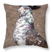 White-gray Pigeon Profile Throw Pillow